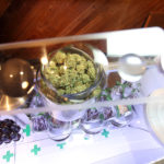 How to Start a Blooming Career as a Budtender