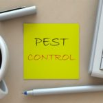 Blogs Every Pest Control Professional Should Follow