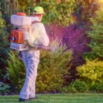 4 Tips On Becoming A Pest Control Technician
